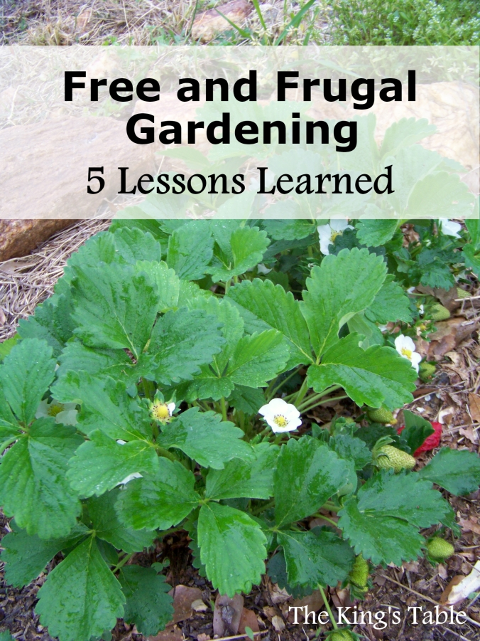 Free and Frugal Gardening: 5 Lessons Learned
