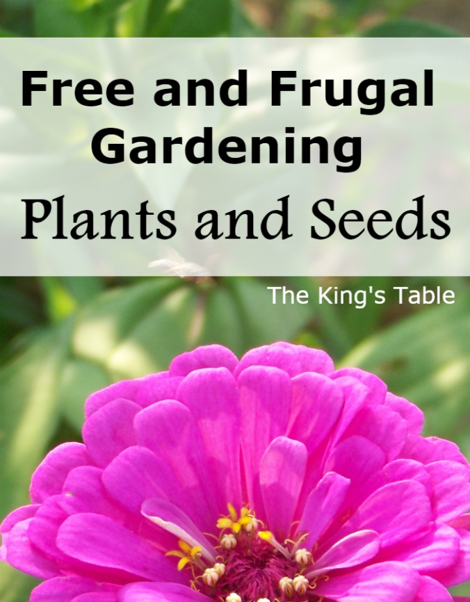 Free and Frugal Gardening: Plants and Seeds. How to get garden plants for free or really cheap. | The King's Table