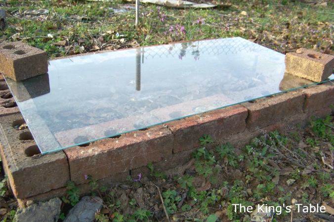 Cold Frame | The King's Table