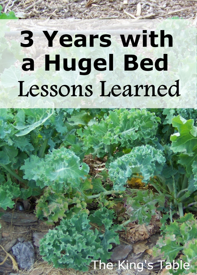 3 Years with a Hugel Bed: Lessons learned about gardening and hugelkulture | The King's Table